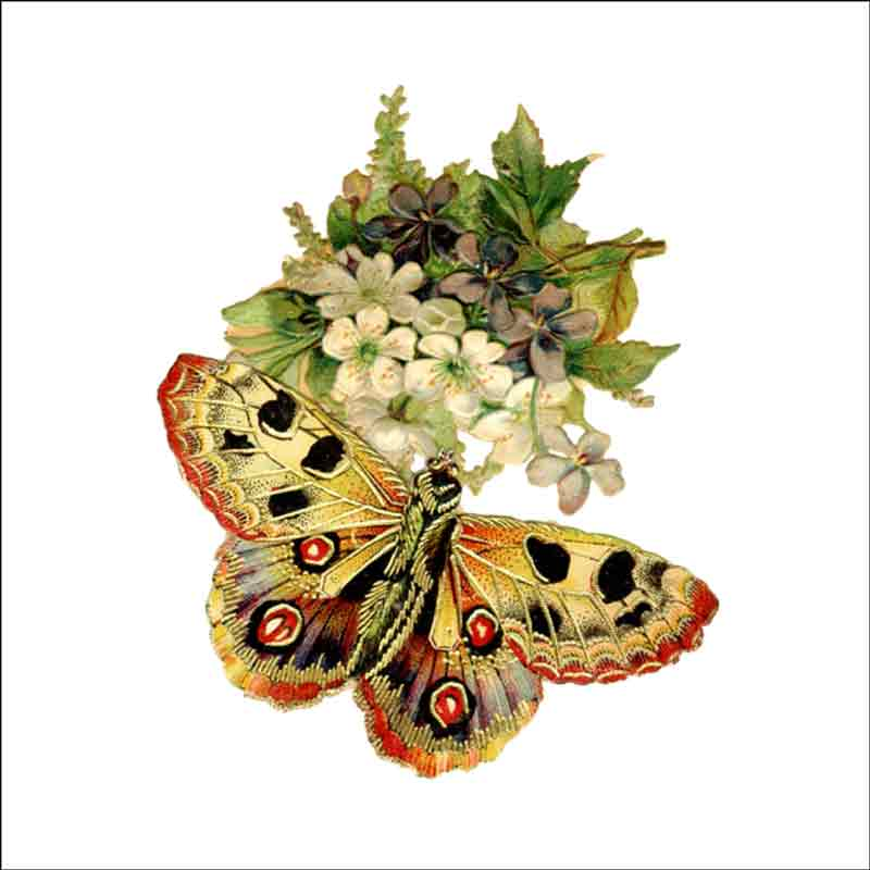 Ceramic Butterfly Tiles 6 pieces