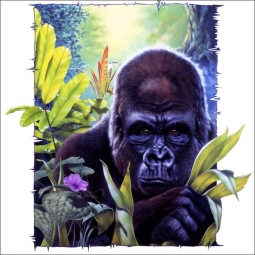 King Kong by Bruce Eagle Ceramic Accent & Decor Tile - BEA022AT