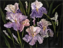 Collection of Irises by Carolyn Cook Ceramic Tile Mural CC005