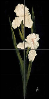 White Iris I by Carolyn Cook Ceramic Tile Mural - CC015
