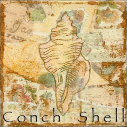 Sea Life: Conch Shell by Bridget McKenna Floor Accent Tile - CCI-BRI251AT