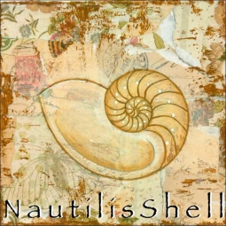 Sea Life: Nautilus Shell by Bridget McKenna Ceramic Accent & Decor Tile - CCI-BRI256AT