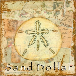 Sea Life: Sand Dollar by Bridget McKenna Ceramic Accent & Decor Tile - CCI-BRI257AT