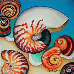 Nautilus by Nancy Jacey Ceramic Accent & Decor Tile CPA-NJ11030AT