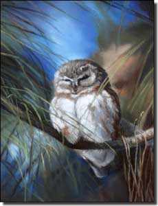 "Hughbanks Owl Bird Ceramic Accent Tile 6"" x 8"" - DHA030AT"