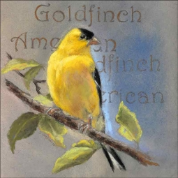 American Goldfinch by Debbie Hughbanks Ceramic Accent & Decor Tile DHA056AT
