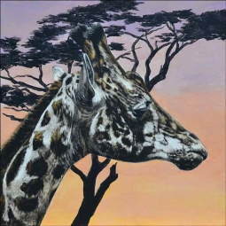 Out of Africa by Debbie Hughbanks Ceramic Accent & Decor Tile DHA069AT