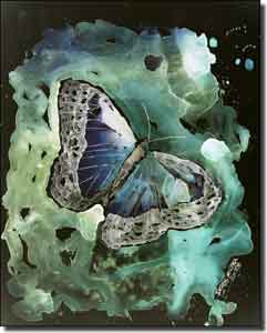 "McCrea Butterfly Ceramic Accent Tile 8"" x 10"" - DMA042AT"