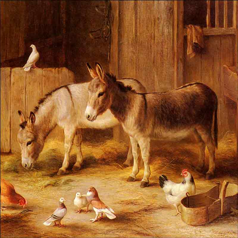 Farmyard Friends by Edgar Hunt Ceramic Accent & Decor Tile EH007AT