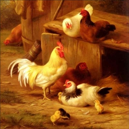 Chickens and Chicks by Edgar Hunt Ceramic Accent & Decor Tile EH010AT