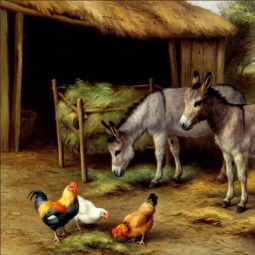 Donkeys and Poultry by Edgar Hunt Ceramic Accent & Decor Tile EH029AT