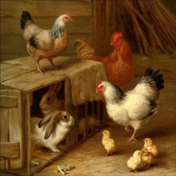 Cockerel Hens, Chicks and Rabbits by Edgar Hunt Ceramic Accent & Decor Tile EH036AT