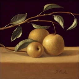 Poole Pears Fruit Ceramic Accent & Decor Tile - FPA009AT