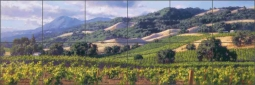 Song of the Wine Country by June Carey Ceramic Tile Mural GW-JC003