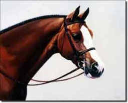"Crawford Bay Equine Horse Ceramic Accent Tile 10"" x 8"" - JCA001AT"