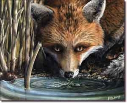 "Sparks Fox Animal Ceramic Accent Tile 10"" x 8"" - JSA005AT"