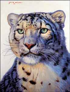 "White Snow Leopard Animal Ceramic Accent Tile 6"" x 8"" - JWA022AT"