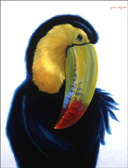 Toucan I by Jack White Ceramic Accent & Decor Tile JWA025AT