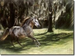 "Caesar by Kim McElroy - Horse Equine Ceramic Tile Mural 18"" x 30"" Kitchen Shower Backsplash"