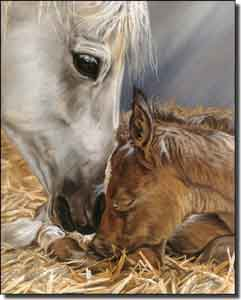 "McElroy Horse Equine Ceramic Accent Tile 8"" x 10"" - KMA041AT"