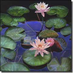 "Macon Lily Floral Glass Wall Floor Accent Tile 6"" x 6"" - LMA007AT"