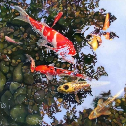 Koi Reflections #2 by Leslie Macon Ceramic Accent & Decor Tile LMA024AT