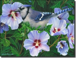Macon Blue Jay Bird Ceramic Accent Tile - LMA052AT