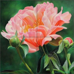 Peony Study II by Leslie Macon Ceramic Tile Mural LMA061