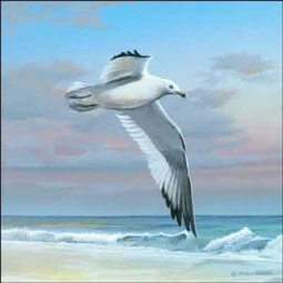Brown Seagull Seascape Ceramic Accent Tile - MBA004