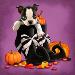 Cazenave Puppy Halloween Ceramic Accent & Decor Tile - MC2-005c