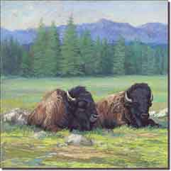 "McDonald Animal Buffalo Ceramic Accent Tile 8"" x 8"" - MMA006AT1"