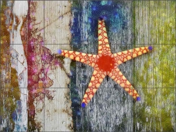 Starfish 1 by Agata & Hector Ceramic Tile Mural OB-AGA41