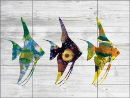 Three Angel Fish on White by Elizabeth St Hilaire Ceramic Tile Mural OB-EN958