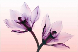 Orchids by Hong Pham Ceramic Tile Mural OB-HP18