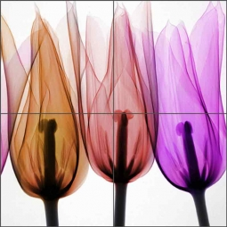 Tulips - Square by Hong Pham Ceramic Tile Mural OB-HP19a