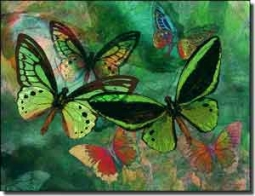 "Bradshaw Butterfly Ceramic Accent Tile 8"" x 6"" - OB-MB21AT"