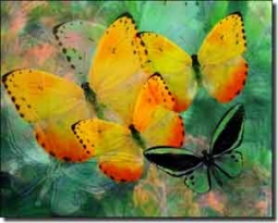 "Bradshaw Butterfly Ceramic Accent Tile 10"" x 8"" - OB-MB22AT"