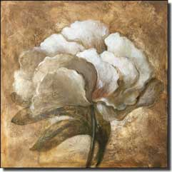 "Rich Peony Floral Ceramic Accent Tile 8"" x 8"" - OB-WR1236"