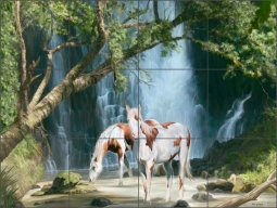 Appaloosa Falls by Jeff Wilkie Ceramic Tile Mural - POV-JWA005