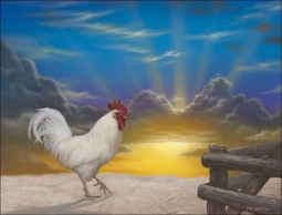 Rooster Sunrise by Jeff Wilkie Ceramic Accent & Decor Tile - POV-JWA029AT
