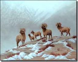 "Kendrick Animals Sheep Ceramic Accent Tile 10"" x 8"" - POV-LKA008AT"