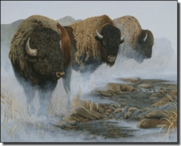 "Kendrick Buffalo Bison Ceramic Accent Tile 10"" x 8"" - POV-LKA022AT"