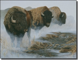 "Kendrick Buffalo Bison Ceramic Accent Tile 8"" x 6""  - POV-LKA022AT"