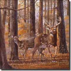 "Binks Deer Animals Ceramic Accent Tile 6"" x 6"" - REB007AT"