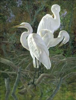 Binks Egrets Birds Wildlife Art Ceramic Accent & Decor Tile - REB013AT