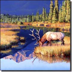 "Chapman Elk Wilderness Ceramic Accent Tile 4.25"" x 4.25"" - RW-JTC009AT"