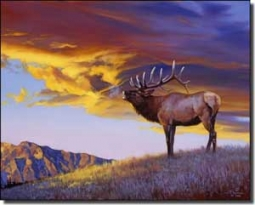 "Chapman Elk Lodge Art Ceramic Accent Tile 10"" x 8"" - RW-JTC010AT"