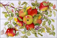 Apples by Marcia Matcham Ceramic Tile Mural - RW-MM001