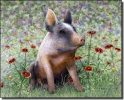 "Matcham Pig Animal Ceramic Accent Tile 10"" x 8""  - RW-MM006AT"