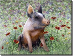 "Matcham Pig Animal Ceramic Accent Tile 8"" x 6"" - RW-MM006AT"